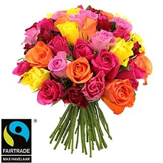 Brassée de roses multicolores équitables