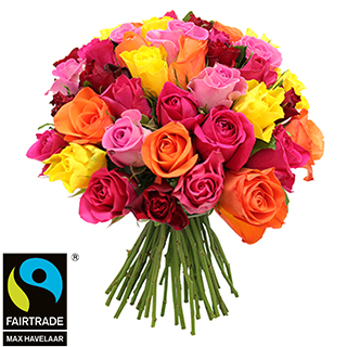 Brassée de roses multicolores + 10 roses offertes Max Havelaar