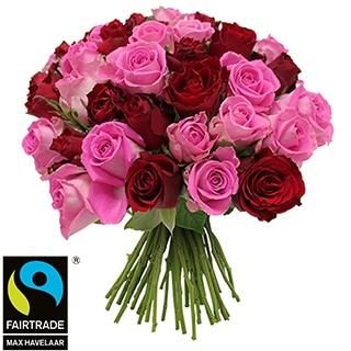Brassée de roses roses et rouges + 10 roses offertes Max Havelaar
