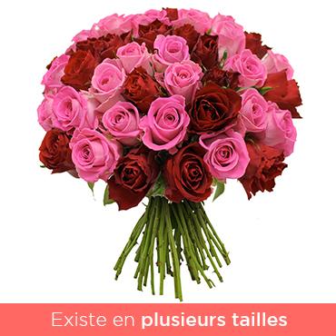 Bouquet de roses Brassée rose et rouge Les Roses de Flora