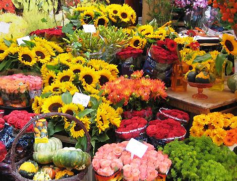 8167f423a808 Fleuriste Andel - Livraison de fleurs Andel (22)